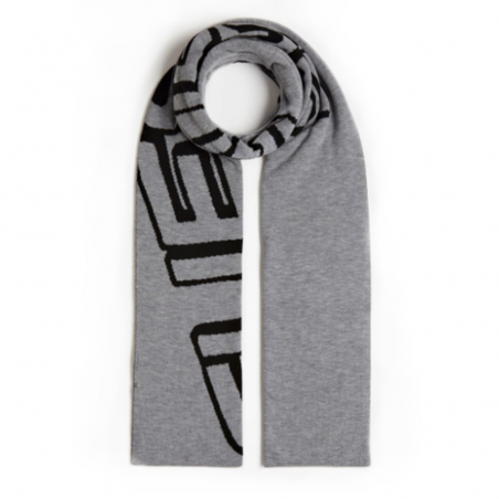 Echarpe homme Guess Gris All over logo jacquard